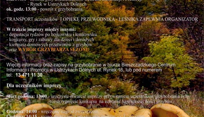 plakat-RYDZ-2015