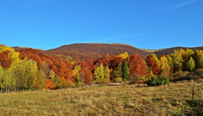 bieszczadzkie szlaki jesienią